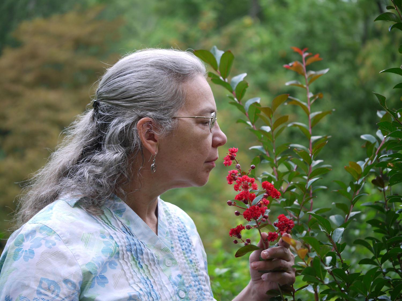 Angelyn Whitmeyer