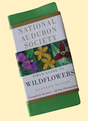 Audubon-Society-Wildflower-Guide