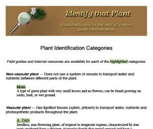 Plant categories handout