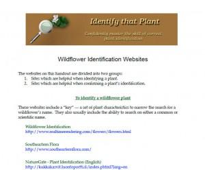 Wildflower identification websites