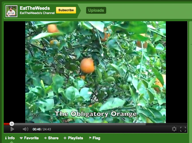 Eat the Weeds video channel