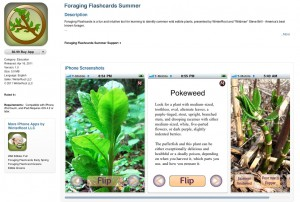 Foraging app by Steve Brill