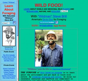 Steve Brill website page
