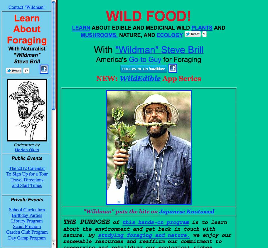 Steve Brill website page