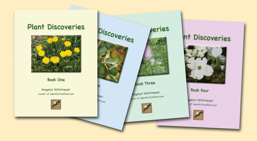 Plant Discoveries four covers