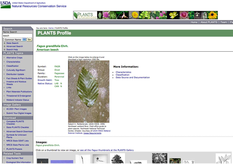 PlantsDotGovDatabase screen shot
