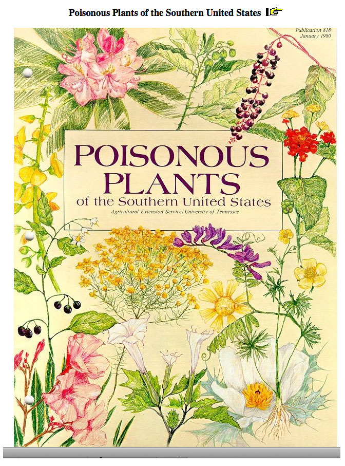 Poisonous plants of southern US