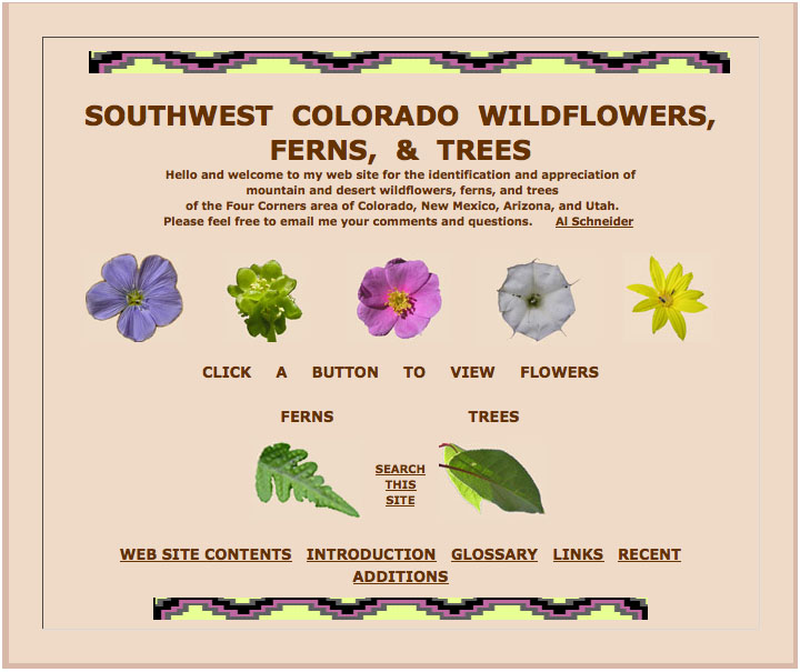 SW Colorado Wildflowers